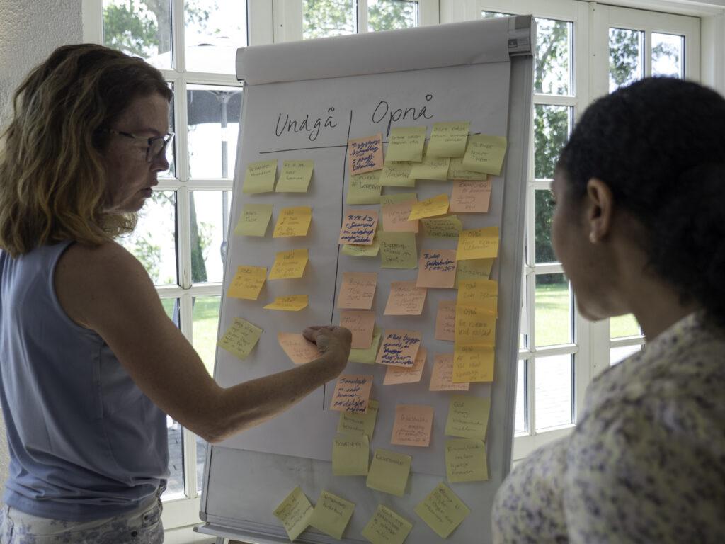 Workshop om erhvervsmasterplan